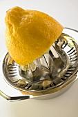 Lemon on lemon squeezer
