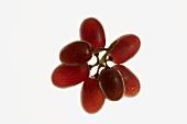 Red grapes, backlit