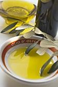 Olive oil in bowl, olive sprig, carafe, bottle