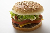 Cheeseburger with tomato, lettuce, ketchup and mayonnaise