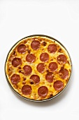 Salami and cheese pizza