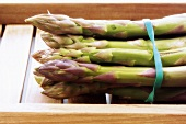 Green asparagus, in bundles, in crate