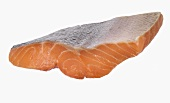 Salmon fillet from Scotland