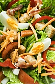 Salad leaves with vegetables, egg, cheese, bacon and croutons