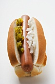 Hot dog with relish and onions