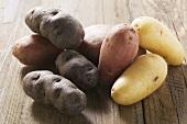Various types of potato on wooden background