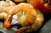 Fried shrimps with cherry tomatoes