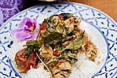 Chicken curry with Thai basil (Thailand)