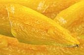 Smoked haddock fillet, dyed yellow