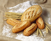 White breads and cereal ears on floured jute