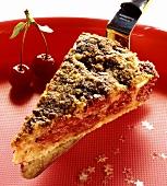 A piece of cherry cake on cake slice