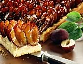 Tray-baked plum cake (datschi)