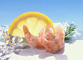 Winter landscape made from shrimps, lemon slice & ice cubes