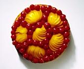 Pfirsich-Obstkuchen