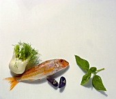 Fennel; Red Mullet; Clams & Basil