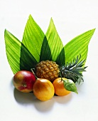 Mango, granadillo, mandarin & baby pineapple in front of leaves