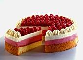 Raspberry cream gateau
