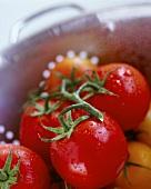 Tomaten in einem Sieb