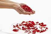 Hands dropping rose petals into bowl of water