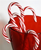 Several red and white candy canes in a glass