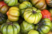 Green beefsteak tomatoes (filling the picture)