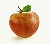A 'Gala' apple