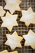 Star biscuits sprinkled with icing sugar