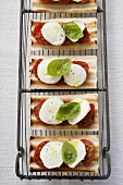 Tomatoes, mozzarella and basil on grilled bread