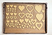 Cut-out biscuits on a baking tray