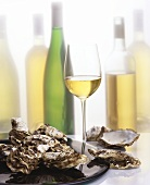 Still life with oysters and white wine