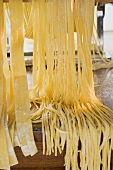 Home-made pasta with pasta maker