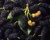 Mulberries (full-frame)