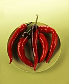 Five red chillies on green plate