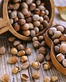 Hazelnuts, shelled and unshelled