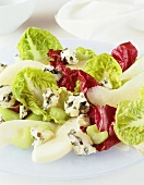 Salad leaves with celery, pears and blue cheese