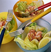 Iceberg lettuce with shrimps