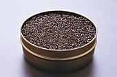 Black caviar in the tin