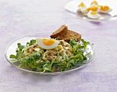 Matjes herring tartare with egg and corn salad