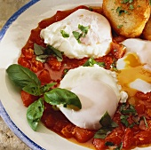 Poached eggs in tomato sugo
