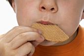 Boy biting an ice cream wafer