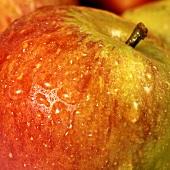 Apple, close-up