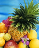 Assorted exotic fruits and orchids