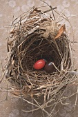Easter eggs (one red) in an Easter nest (overhead view)
