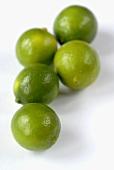 Five limequats