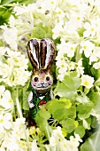 White spring flowers with chocolate Easter Bunny
