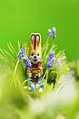 Grape hyacinths with chocolate Easter Bunny & chocolate eggs
