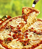 Pizza Margherita, one slice on pizza server