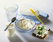 Various dairy products & a slice of bread with soft cheese