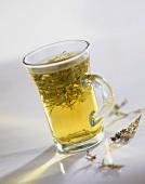 Thyme tea in a tea glass