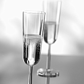 Two glasses of sparkling wine (black and white photo)